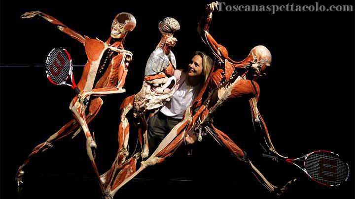 Mengenal Teater Anatomi Terindah Di Italia